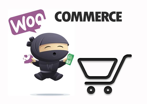 Kako pokrenuti woocommerce online  prodavnicu?